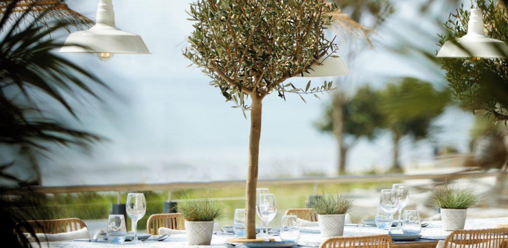 Ikos Andalusia _ Ouzo Restaurant Outdoor Detail_792x564